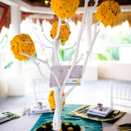 300x300_tree-centrepieces-with-pomanders64b13a2db5ee4df9bb7a7ce728df47f7