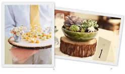 wood slice centerpiece _ platter